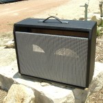 Custom Fender Vibrolucx 2*10 Replacement Cabinet