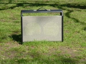 Custom 2*10 Combo Cabinet for a Fender Blackface Bassman